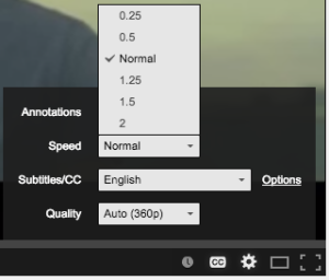 YouTube Playback Speed Option